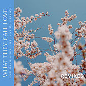 What They Call Love (Remixes) by Ferdinand Weber