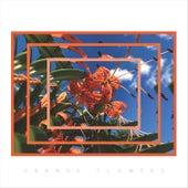 Orange Flowers by Kayla Nicole