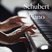 Schubert Piano von Various Artists
