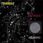Triangle by The Wild