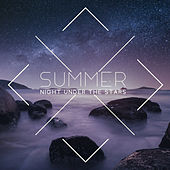 Summer Night Under the Stars by Various Artists
