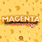 Cheddar / Acid by Magenta