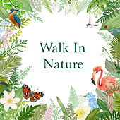 Walk in Nature by Various Artists