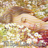 78 Spa Life Audio de Smart Baby Lullaby