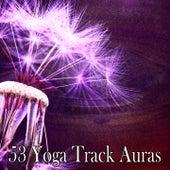 53 Yoga Track Auras de White Noise Research (1)