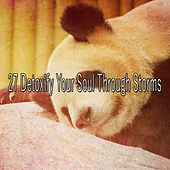 27 Detoxify Your Soul Through Storms by Rain Sounds and White Noise