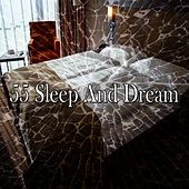55 Sleep and Dream by Ocean Sounds Collection (1)