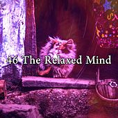 46 The Relaxed Mind by Nature Sound Series