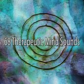 68 Therapeutic Mind Sounds by Classical Study Music (1)