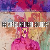68 Gifted Natural Sounds von Yoga