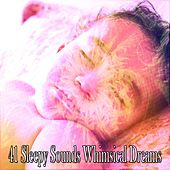41 Sleepy Sounds Whimsical Dreams by Ocean Sounds Collection (1)