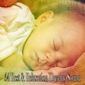 54 Rest & Relaxation Dreamy Sound de Sleepy Night Music