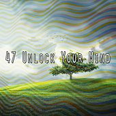 47 Unlock Your Mind by Lullabies for Deep Meditation