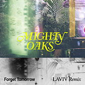 Forget Tomorrow (LAVIV Remix) de Mighty Oaks