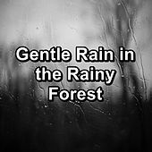 Gentle Rain in the Rainy Forest by Baby Sleep Music (1)