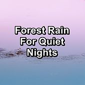 Forest Rain For Quiet Nights de Nature's Music