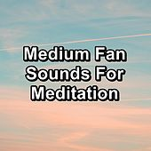 Medium Fan Sounds For Meditation de Yoga