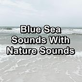 Blue Sea Sounds With Nature Sounds de Sleep Music (1)