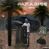 Paradise Dre von DreYardy