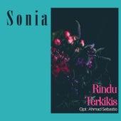 Rindu Terkikis by Sonia