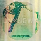 Ricohet Reptilians de Unknown