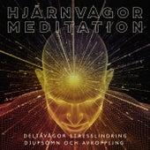 Hjärnvågor Meditation - Deltavågor stresslindring, Djupsömn och avkoppling von Blandade Artister