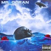 Mr. Ocean by K. Knight