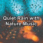 Quiet Rain with Nature Music by S.P.A