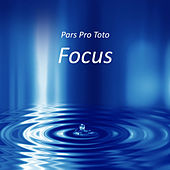 Focus von Pars Pro Toto