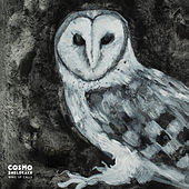 Wake Up Calls by Cosmo Sheldrake