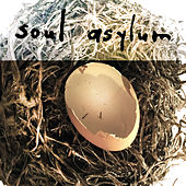 The Beginning (Acoustic) by Soul Asylum
