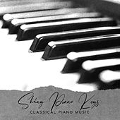 Shiny Piano Keys - Classical Piano Music von Various Artists