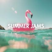 Summer Jams de Various Artists
