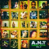 Nobody Like Me Vol.2 de Ant (comedy)