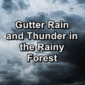 Gutter Rain and Thunder in the Rainy Forest de The Rest