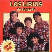 Cada Vez Mejor von Los Lirios de Santa Fé