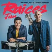 Raices Jam by Pablo Gil Tony Succar