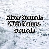 River Sounds With Nature Sounds de Relaxation And Meditation