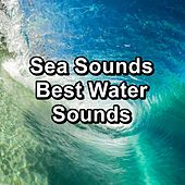 Sea Sounds  Best Water Sounds di Meditation (1)