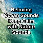 Relaxing Ocean Sounds Keep Calm with Nature Sounds by Spa Music (1)