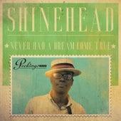Never Had a Dream Come True by Shinehead
