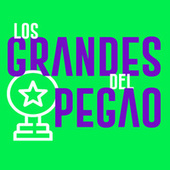Los Grandes del Pegao de Various Artists