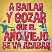 A Bailar Y Gozar Que El Año Viejo Se Va Acabar by Various Artists