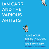 I Like Your Taste in Remixes von Ian Carr