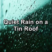 Quiet Rain on a Tin Roof von Sounds Of Nature