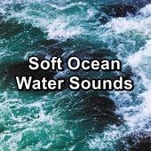 Soft Ocean Water Sounds von Alpha Waves