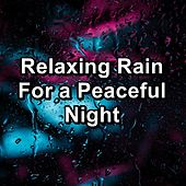 Relaxing Rain For a Peaceful Night by Meditation Rain Sounds