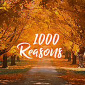 1000 Reasons by Instrumental Worship Project