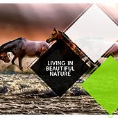 Living in Beautiful Nature by Various