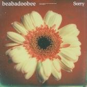 Sorry by beabadoobee